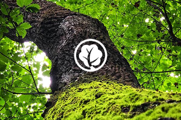 doneer een boom